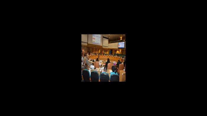 اجتماع إقليمي لتعزيز الشراكة مع منظمات المجتمع المدني  للوقاية من الأمراض غير السارية و مكافحتها